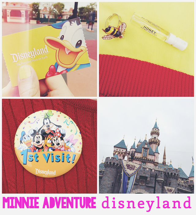 Minnie Adventure: It's a Small World