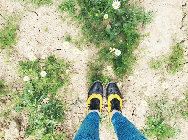 Mini Adventure: Walking in Wiltshire