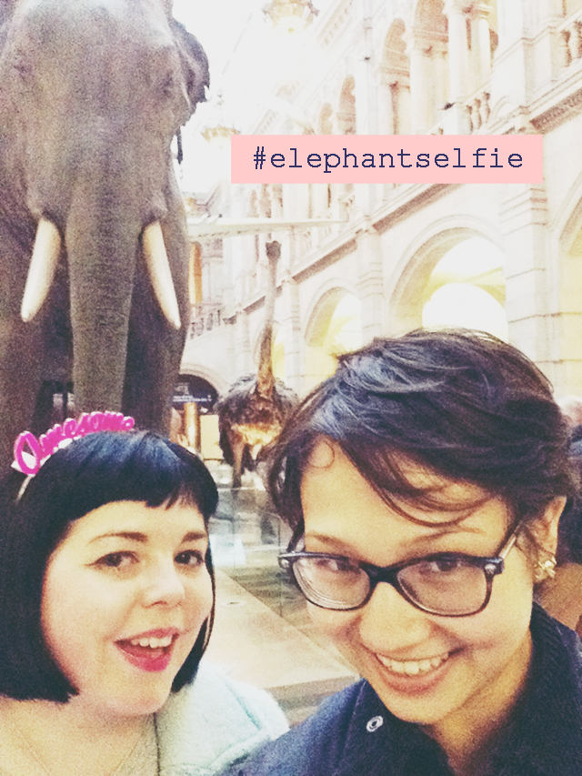Elephant Selfies, and Other Excuses to Travel