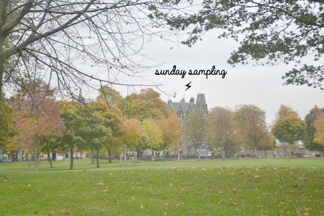 Sunday Sampling / You Can Afford Your Dream