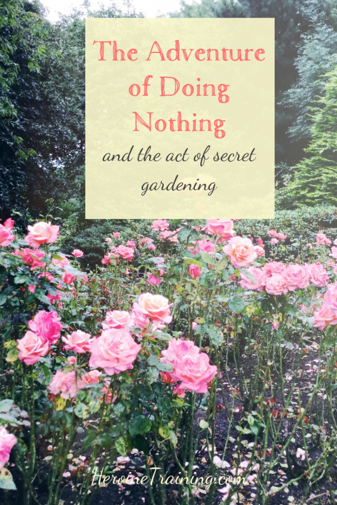 The Adventure of Doing Nothing